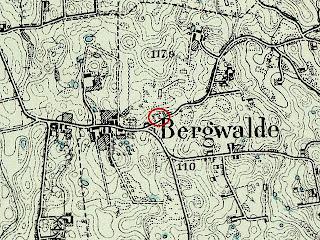 bergwalde1.jpg