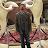 Kevin Akenhead avatar image