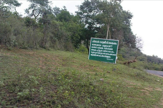 Snaps from Idukki part two 8