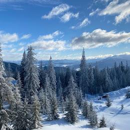 Студия современного маркетинга ADMA logo