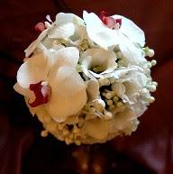 Мітки все для жінок весілля свята