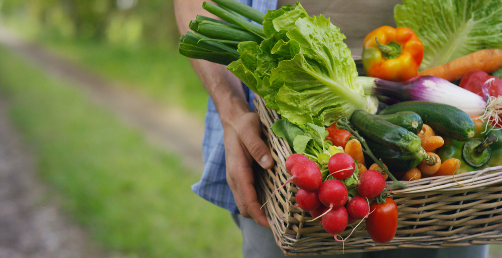 cesta de legumes e verduras