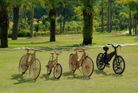 Natural Fiber Bicycle 7