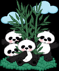 PANDAS%2525252520BY%2525252520BUSH%2525252520WITH%2525252520CLOUDS.jpg