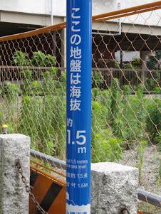 海抜1.5m