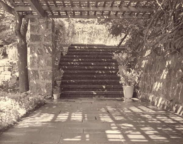 [Steps at Warrawee, Toorak, Victoria], Creator: Walling, Edna, 1895-1973, photographer