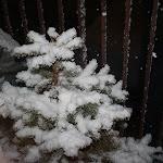 7 kwietnia 2012 ;-) niby wiosna a jeszcze tyle śniegu