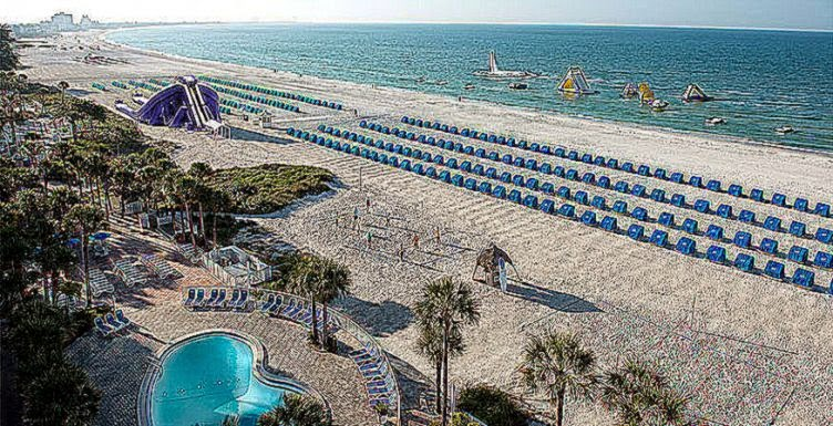 Island Grand   TradeWinds Resort   Best St Pete Beach Hotels in FL