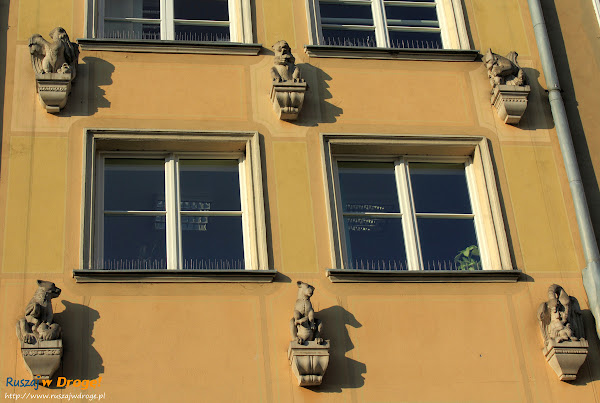 Zwierzęta na jednej z kamienic na ulicy Długiej w Gdańsku
