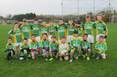 Millmore Gaels, Plate Final, Saturday October 25th, 2014