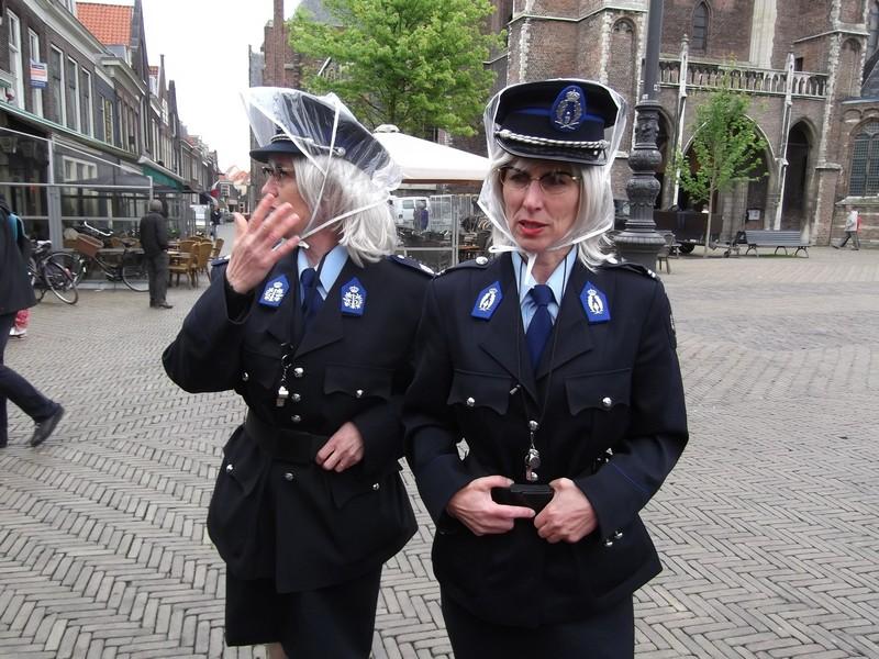Delft Vigilesse