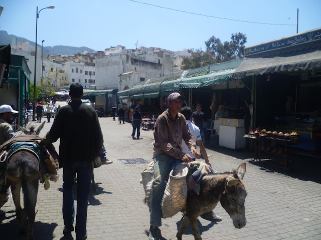 Moulay Idris 2