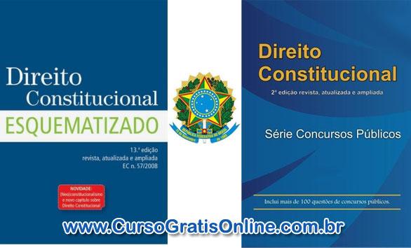 Direito Contitucional para Concursos