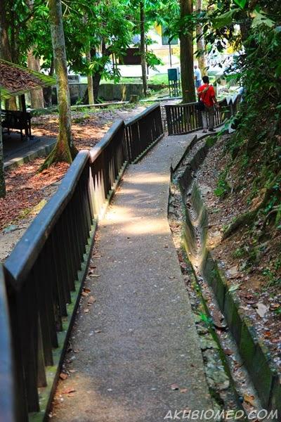 laluan ke air terjun sungai kroh