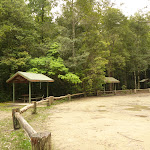 Boarding House Dam Picnic area near Watagan Forest Rd in the Watagans (322478)