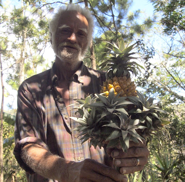 Alberto Gutierrez and a pineapple fresh from his farm