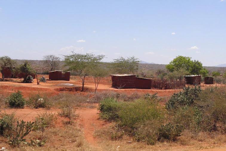 https://lh5.googleusercontent.com/-m5Rj_YCLB6w/UwSNTtkv4DI/AAAAAAAAGWQ/H8ApGdQk3uc/w757-h508-no/Kenia+Kilifi+357.JPG