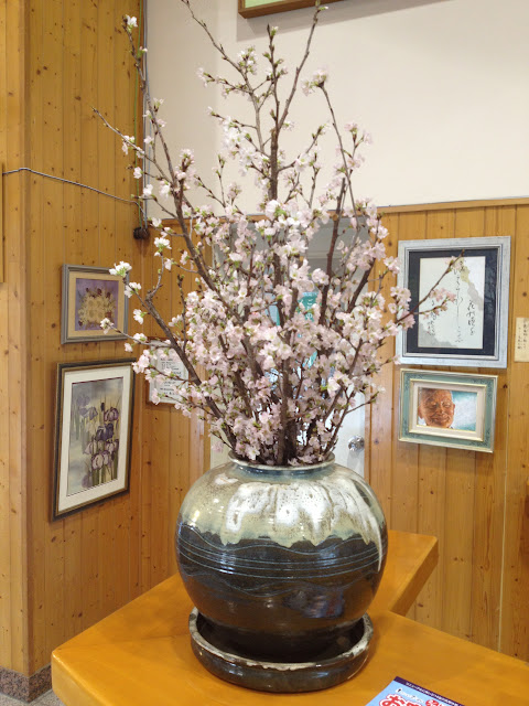 Blooming sakura branches in a vase