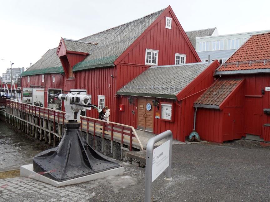 Norvège mars 2014 SAM_1553