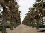 Foto de las Playas de la ciudad de Valencia