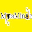metamindz