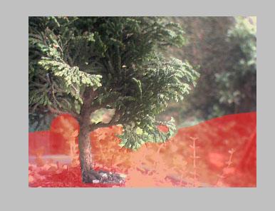 A parte em vermelho na Quick Mask deverá ser branca, portanto, opaca, escondendo o vídeo nesta parte da imagem