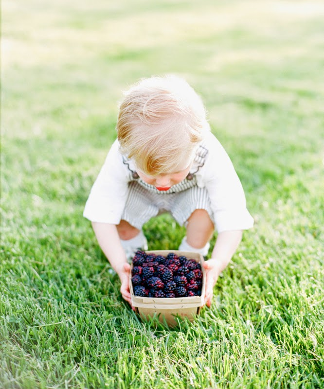 Berries and Cutie Pies at Rockland Farms, Maryland