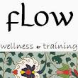Flow E