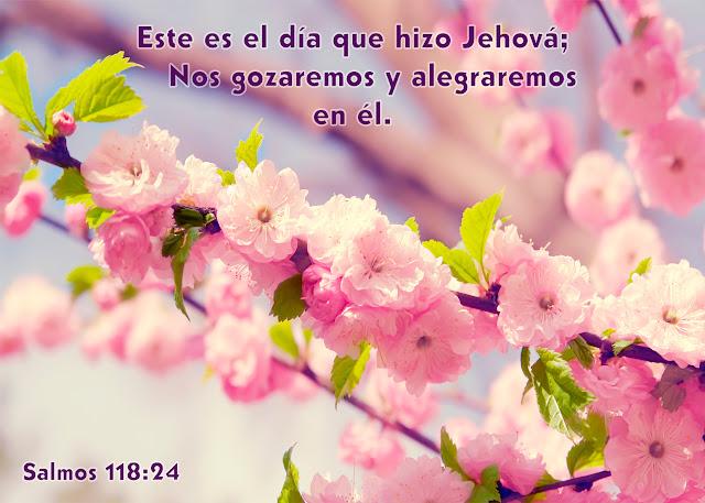 Salmos 118.24