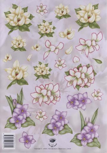 2318 Nel v.Veen bloemen (2).jpg