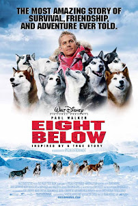 Những Chú Chó Dũng Cảm - Eight Below poster