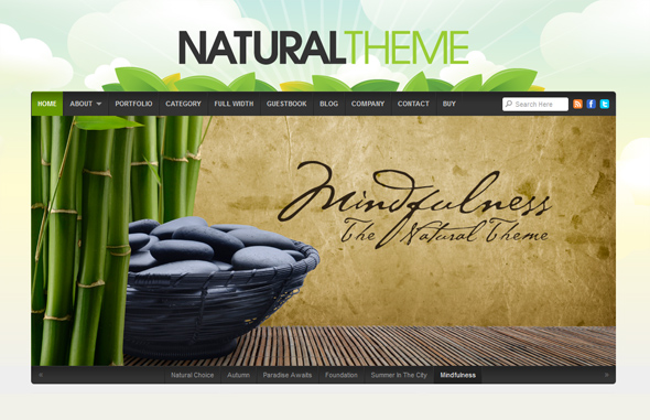 Natural Green WordPress Theme
