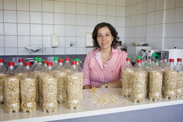 UFRN: Estudo com plantas pode ampliar produção de biodiesel
