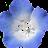 C- NMN-C avatar image