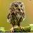 Tabbasam Iqbal avatar image