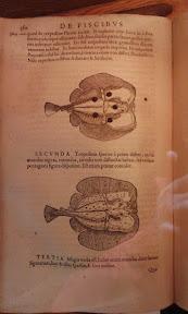 xxx imagen 10