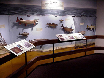 April Programs for Families set for Michigan's Wolf Lake State Fish Hatchery Visitor Center