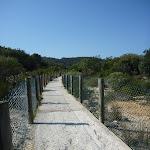 Concrete track to Little Congwong beach near La Perouse (308705)