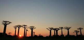 Africa, Madagascar