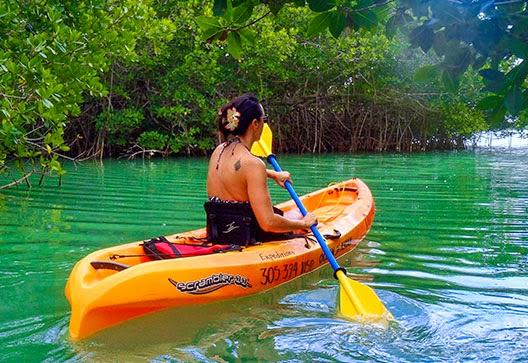 Key Largo Kayak Rental Mangrove Tunnels
