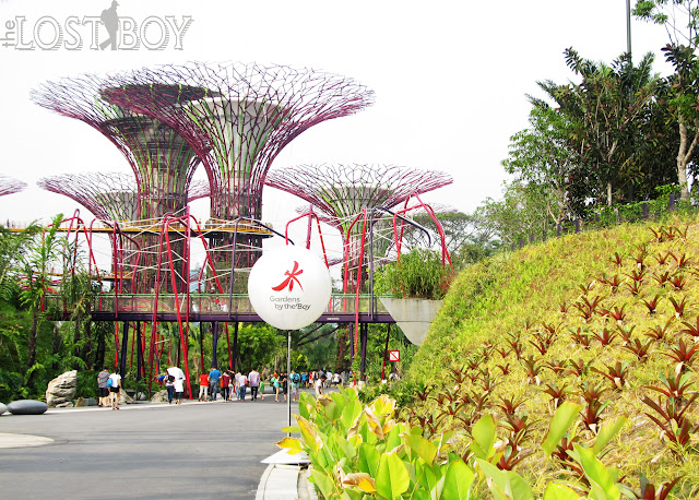 Garden By The Bay Davao City singapore's gardensthe bay: my first time - the lost boy lloyd