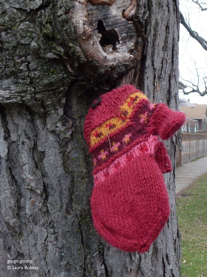 Everyday Photo: Missing Mitten