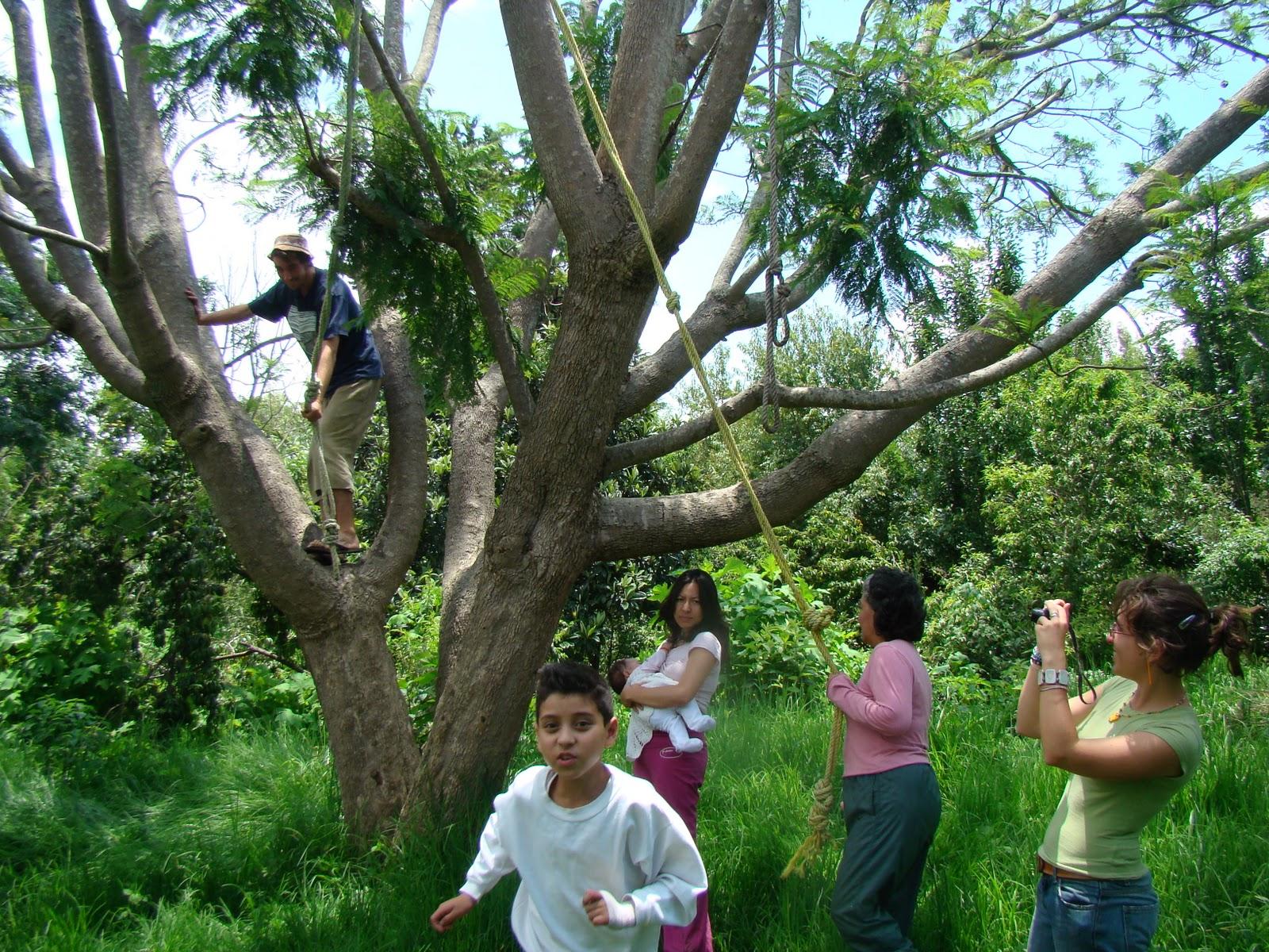 Escuela de permacultura el jard n m gico de arocutin for El jardin magico