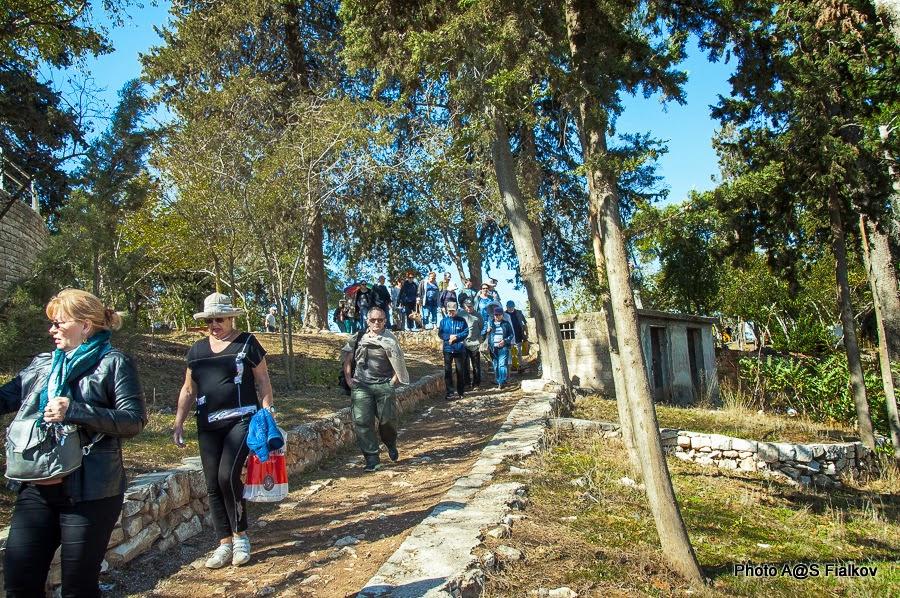 Цфат. Парк на крепостной высоте. Экскурсия по Верхней Галилее. Гид в Израиле Светлана Фиалкова.