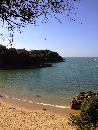 Hidden beach on the Ile d'Aix. From 100 Places in France Every Woman Should Go