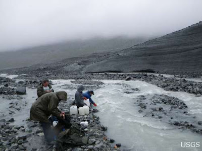 Fossil fuels contribute substantially to organic carbon in Alaskan glaciers