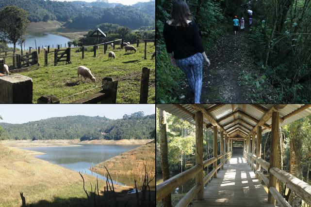 mabu capivari hotel fazenda próximo curitiba trilha ecológica