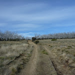 Walking along Round Mountain Trail (289166)
