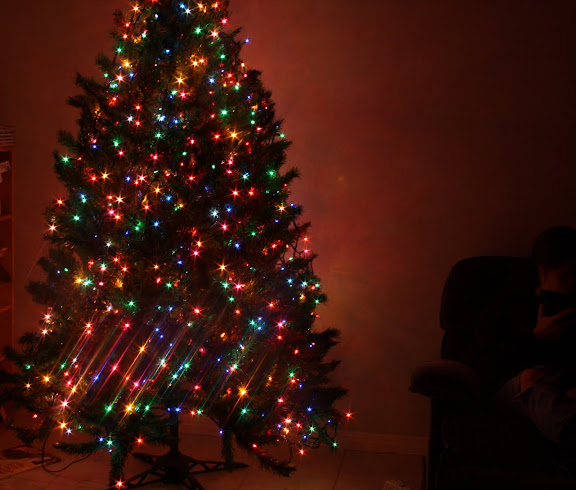 A Christmas tree isn't properly lit unless you can read by it.
