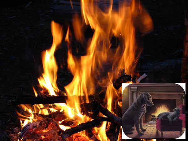 стихи огонь